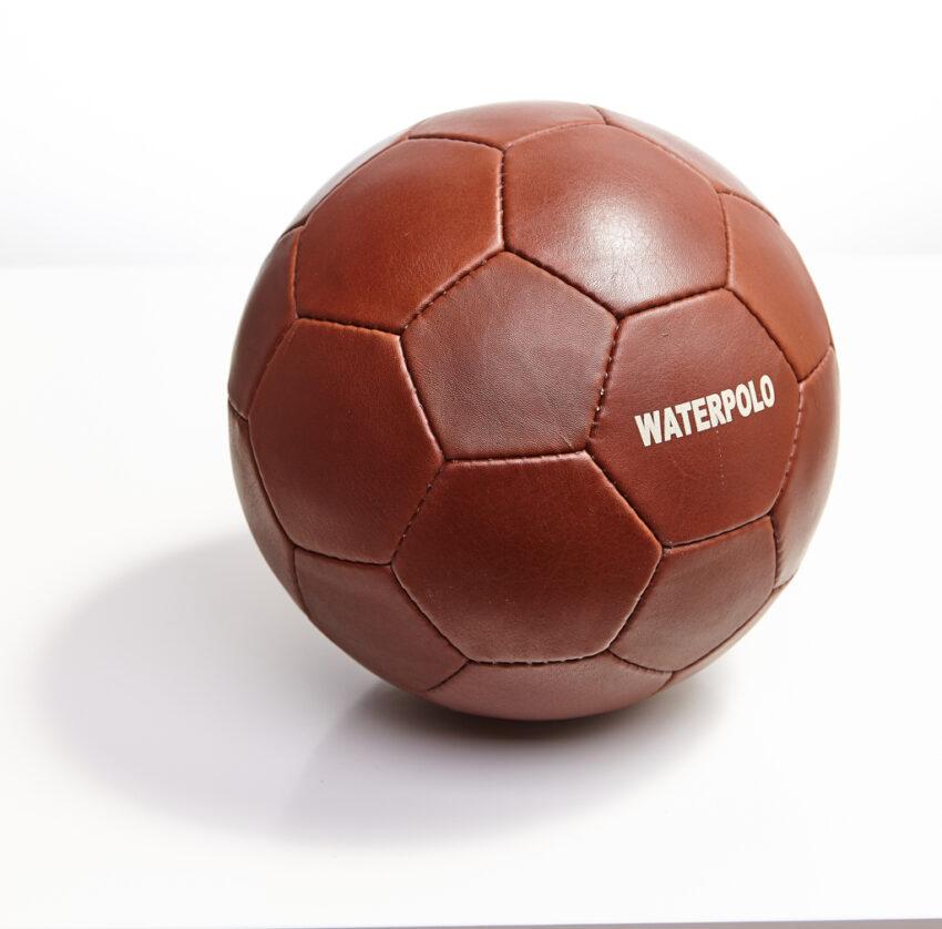 Bőr vizi labda